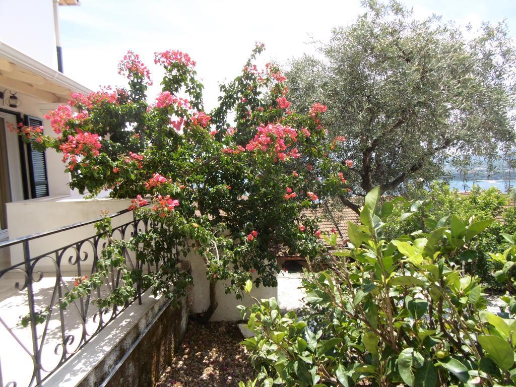 Villa Elli Panoramic View