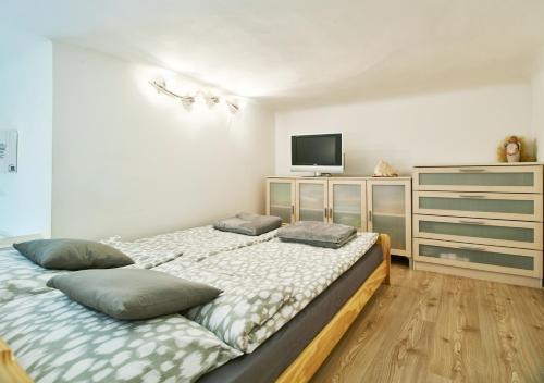 Apartment Green Wall