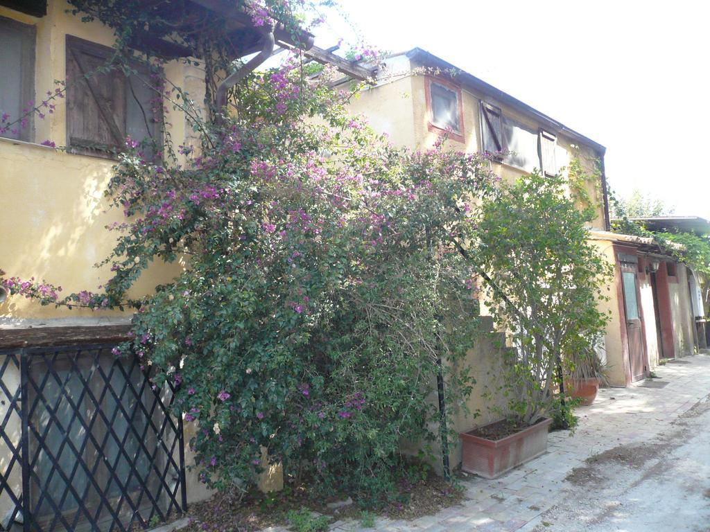 Accommodation Verdetecnica